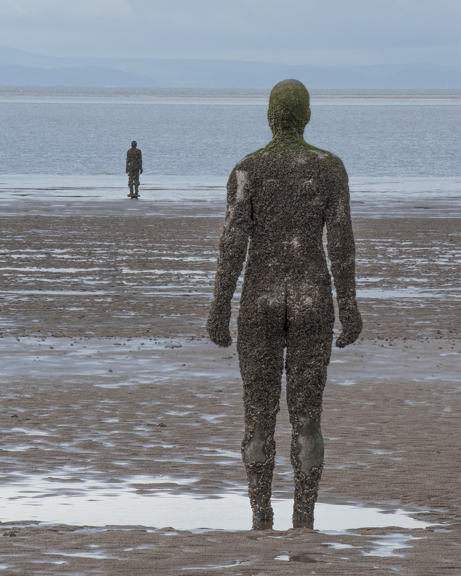 Crosby Beach behind2.jpg